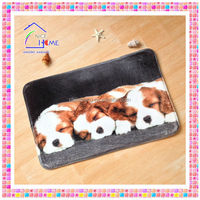 2014 new hot sale cheap price disposable pet mat , pet heat mat