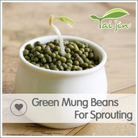 Export Various green mung beans specification ,grade a green mung bean sprout