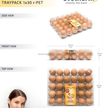 PET plastic transpearant egg tray used on automatic packing machine