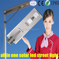 alibaba express famous style 60w solar led street light good quality ip65 outdoor led street light (HXXY-ISSL-80)