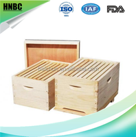 beekeeping tools flat bee hive langstroth export, flow bee hive and bee frame from China factory