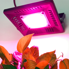 Hot Sale Indoor High Quality Waterproof Hydroponics 100W Plant Lamp COB Led Grow Light