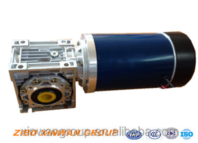 Brushed permanent magnet DC motor with worm gearbox