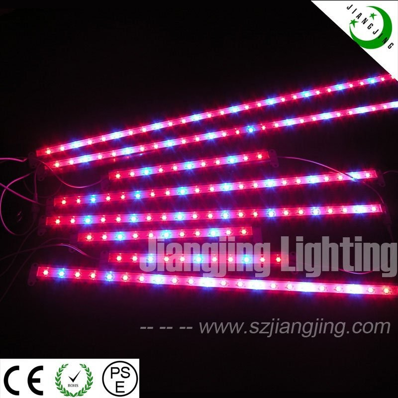 long lifespan 50000hours smd 5050 pink led lamp growing led grow light sockets