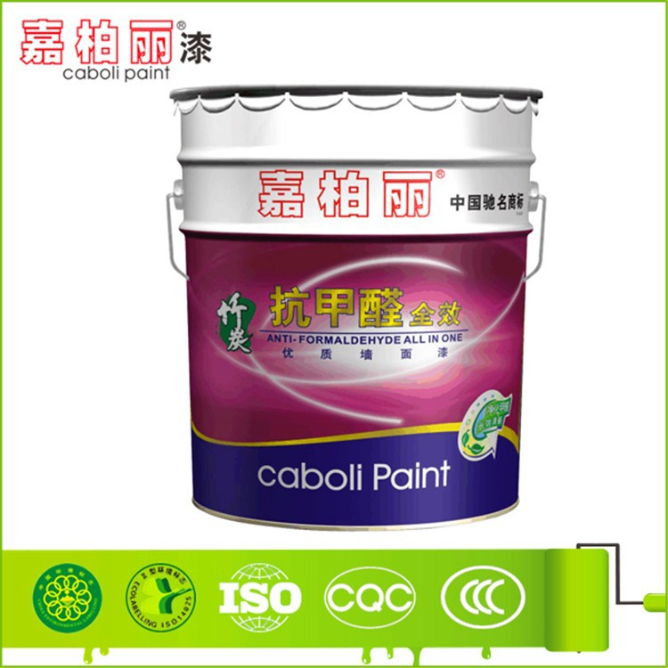 Caboli self-cleaning internal wall paint