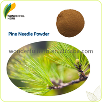 Factory supply pine needle extract powder tea benefits for sale Best price high quality