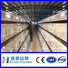 Hens Egg laying house new design chicken cage system