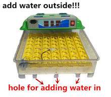new type poultry incubator machine automatic hatching 55 eggs hot sale