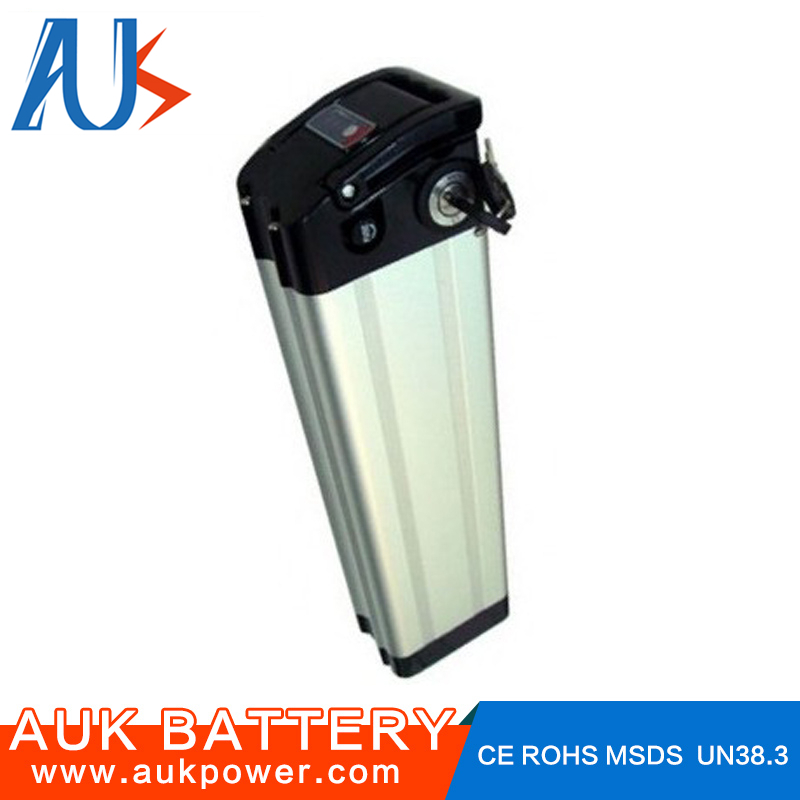 Professional rechargeable electric vehicles battery 36V 10AH