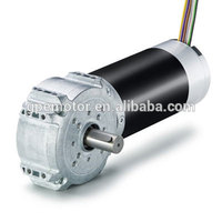 12 Volt Motor And Gearbox