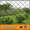 High Quality Galvanized & PVC Coated Chain Link Fence Top Barbed Wire