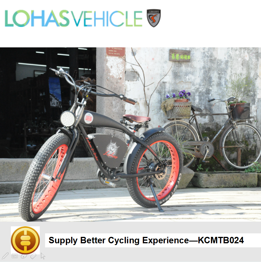 Lohas Vehicle Trails Outback electric cargo bike with rear bike electric conversion KCMTB024