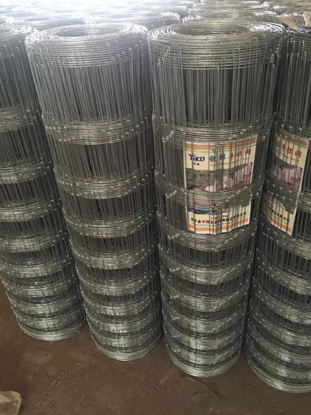 2.5mm 3mm wire 1.2m 1.5m 1.8m high Farm fence deer fence netting for animal husbandry