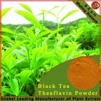 Pure Natural Black Tea Extract Powder Theaflavin 4670-05-7