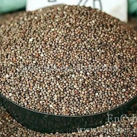 Brown Perilla Seeds For Bird Feed