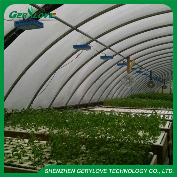 High Quality LED 300W Growlights 3W Led Growth Light for Agriculture
