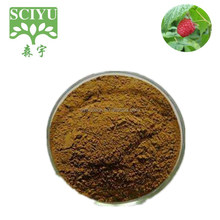 High quality 99% Raspberry Ketone Powder natural Raspberry Fruit Extract