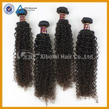 XBL best quality kinkly curly 100 percent brazilian hair weaving