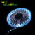 CE,ROHS 12V DC 5050 Smd 5050 Flexible Led Strip 60led/m Warm White 50m 100m RGB Chasing From Ledworker