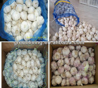 Shandong Garlic Price 2012 Garlic Supplier Wholesale garlic price