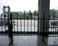 Have 10 years factory experience iron metal garden fence gate