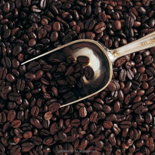 Trade Assurance Top Sell Arabica Coffee Bean