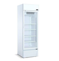 120L Glass Door Display Vertical Freezer With Light Box