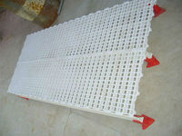Best Selling Plastic Chicken Slat For Poultry House