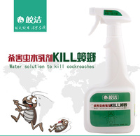 500ml Insect killer Spray Indoor Cockroach Killer for Household