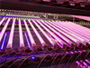 Plant Tube LED Grow Lgiht Plant Grow Light (FY-T8-1200)