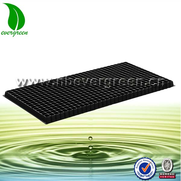 512 cells large plastic seeds growing tray for sale