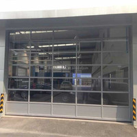 Transparent Glass Gate Panel Lift Garage Doors