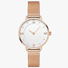 Promotional fashion mesh strap japan movt quartz stainless steel back Gold Women ladies wrist watches