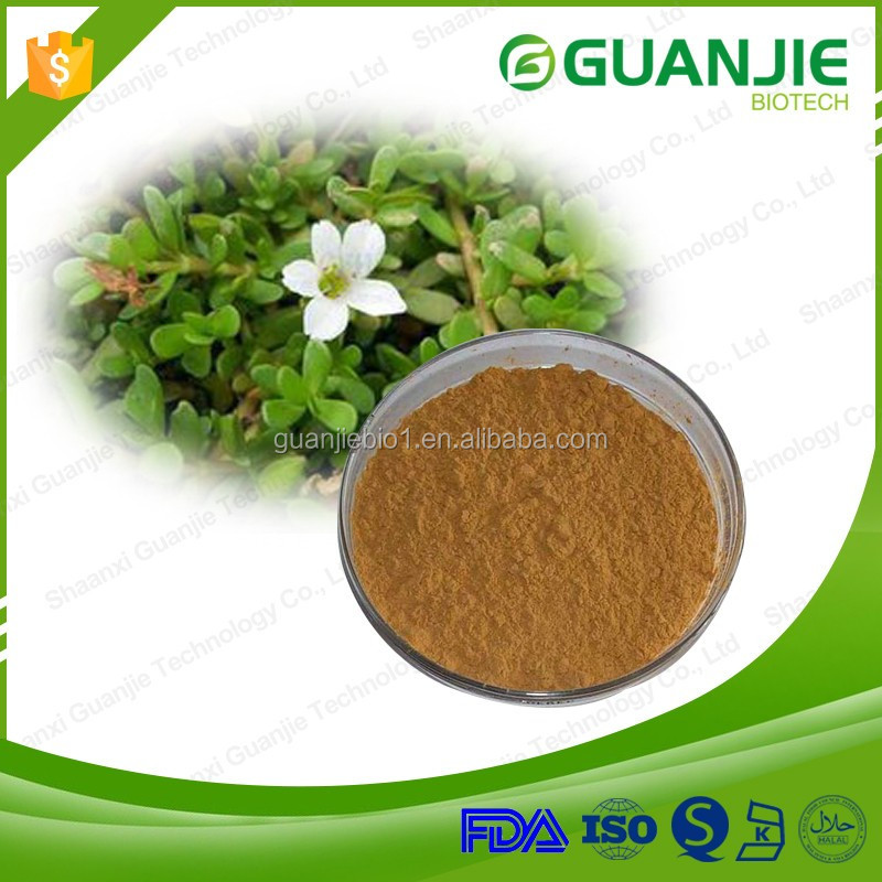 2016 Hot Sale Plant Extract 20%-60% Bacopasides Bacopa monnieri extract