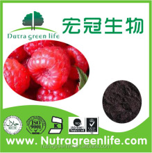 Red raspberry extract for bodybuilding supplement