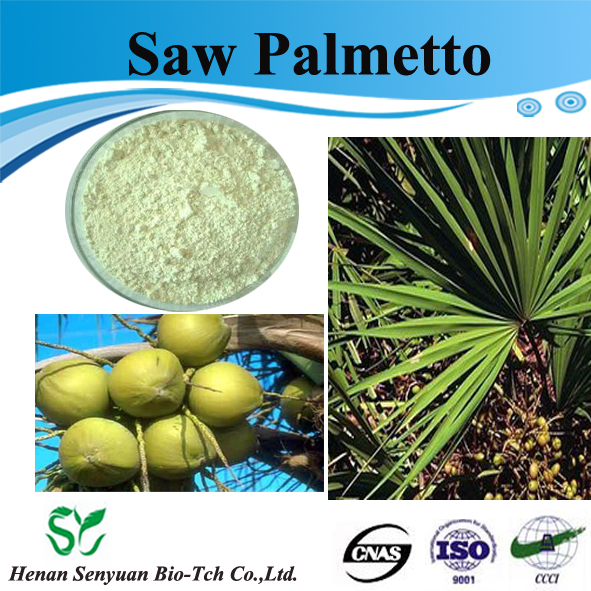 Supply Saw Palmetto Berry P.E. / Saw Palmetto Fruit Extract Powder
