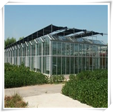 [manufacturer] venlo polycarbonate sheet greenhouse for sale