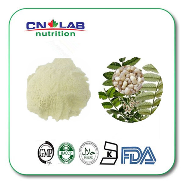 60% Boswellic Acid Boswellia Serrata Extract Powder