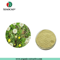 Taraxacum officinale extract/Dandelion Root Extract Powder For Liver Kindney Gallbladder support