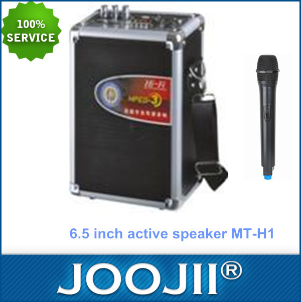 Outdoor active speaker with USB/SD/FM radio