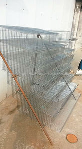 Cheap galvanized chicken cages/wire mesh quail cage for poultry farm