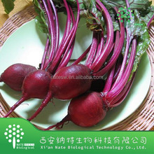 Low price red beet extract powder from China factory