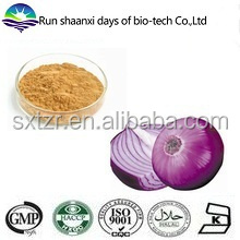 Supply Natural Plant Onion Rhizoma Extract Powder 5% Quercetin