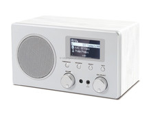 20 years experience of OEM for audio with output power 5W internet radio