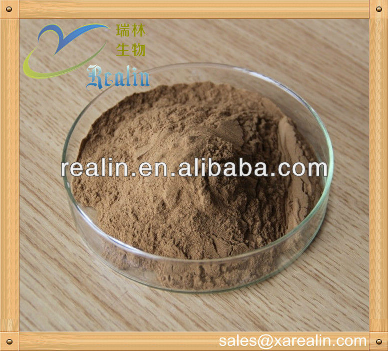 Supply astragalus mongholicus/astragalus extract powder