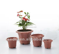 container homes garden planters succulent pots no gardening