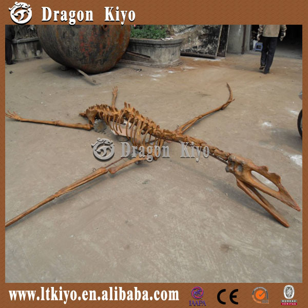 2015 Famous Jurassic Period park Dinosaur Fossil Skull one piece bathing suits