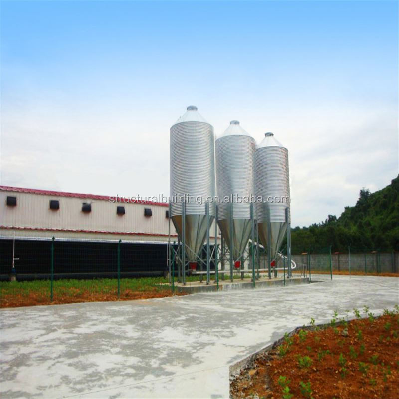 hot sale steel building poultry farm organizational structure low price