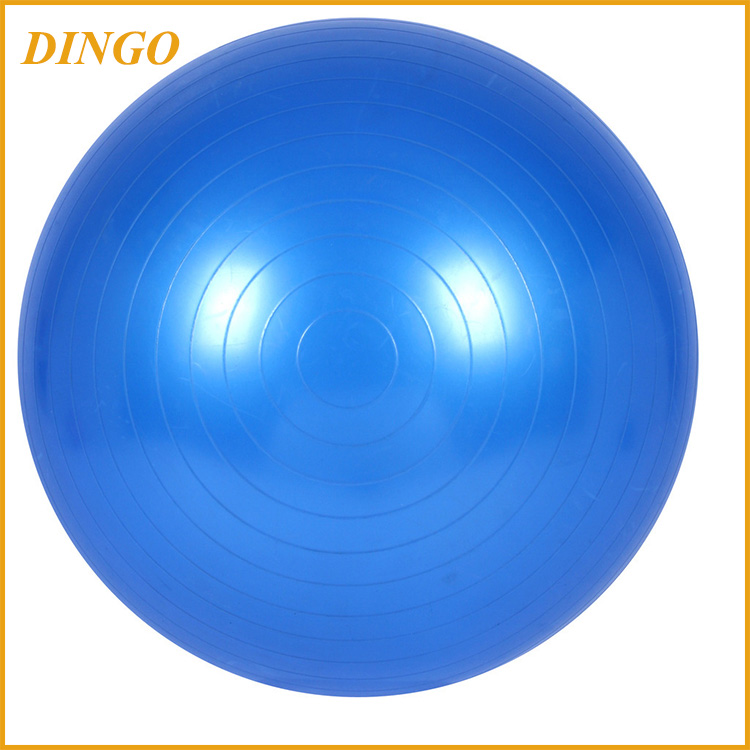 Fitness Stability Ball with Pump Exercise Ball Gym Ball For Workout