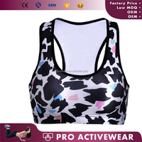 High Quality Fitness Sports Wear Girls Sexy Women Custom Blank Sports Bra For Yoga And Running